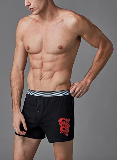 Eros Baskılı Boxer 2'li Siyah